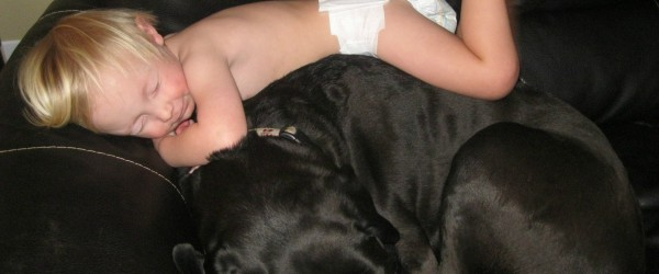 child asleep on dog